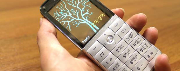 В Саратовской области школьникам, задержавшим вора, подарили мобильники